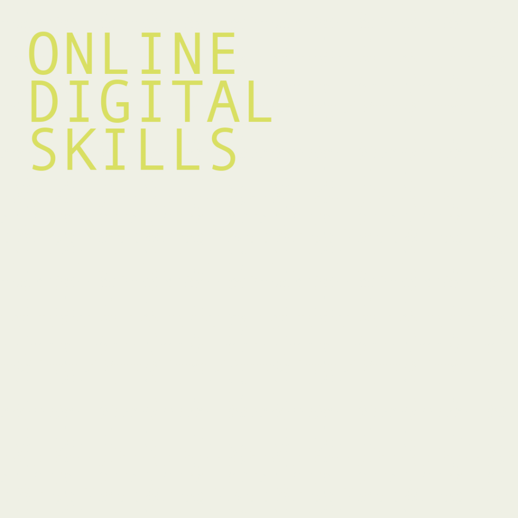 Online Digital Skills